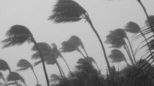 Na Atlantyku narodzą się cztery potężne huragany. To dużo więcej niż rok temu