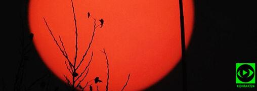 Czerwone Słońce także nad Polską. Zawdzięczamy je Ophelii